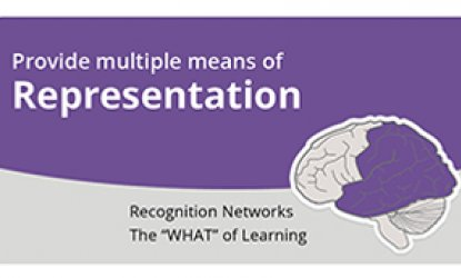 Three brains that represents engagement, representation, action & expression
